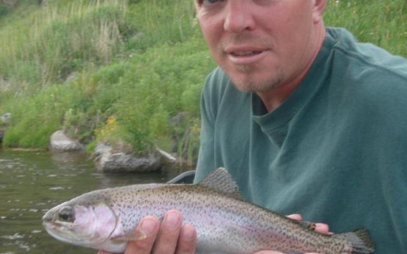 Healthy Rainbow Trout