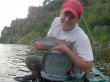 Rainbow Trout caught on a Caddis